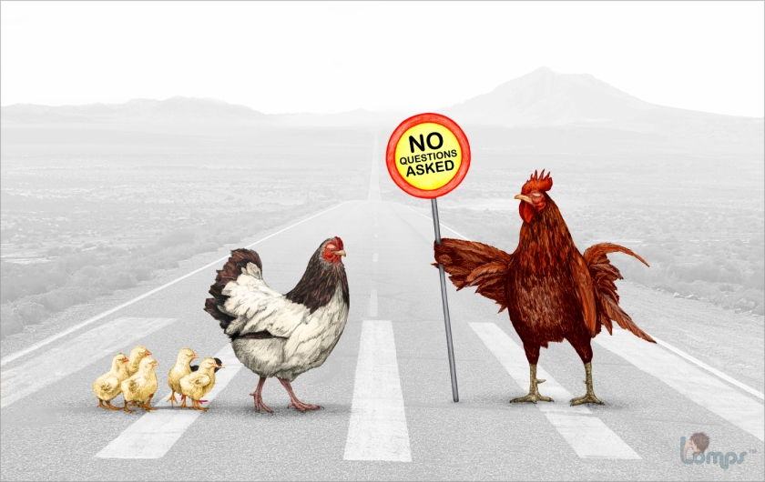 why-did-the-chicken-cross-the-road.jpg